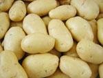 mesin-pengupas-kentang-dan-ubi-maksindotangerang
