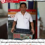 Jual Mesin Egg Roll Sosis Telur Snack Maker 4in1 Listrik di Tangerang